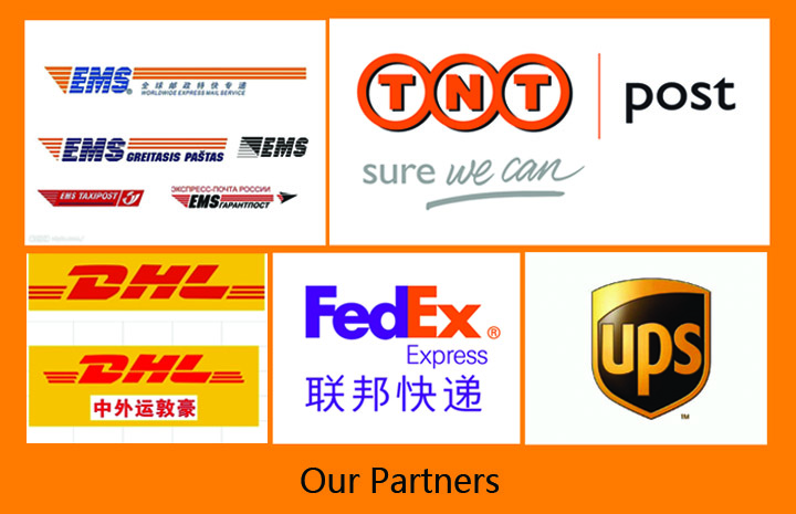 Professional DHL express service form China to America