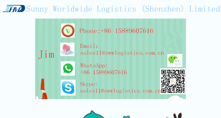 International Express from Shenzhen to Japan