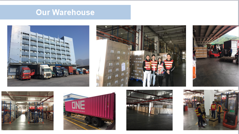 Sunny worldwide logistics Knowledge Sharing Sea Freight Bulk Cabinet
