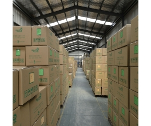 professional warehouse service in Shenzhen