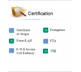 Certification for the export documents