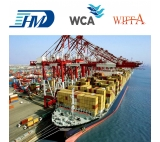 Transportation from Shanghai China to Le Havre France professional sea shipping agent DAP DDP