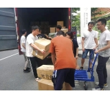 professional sea shipping from China to Switzerland Basel sea shipping services